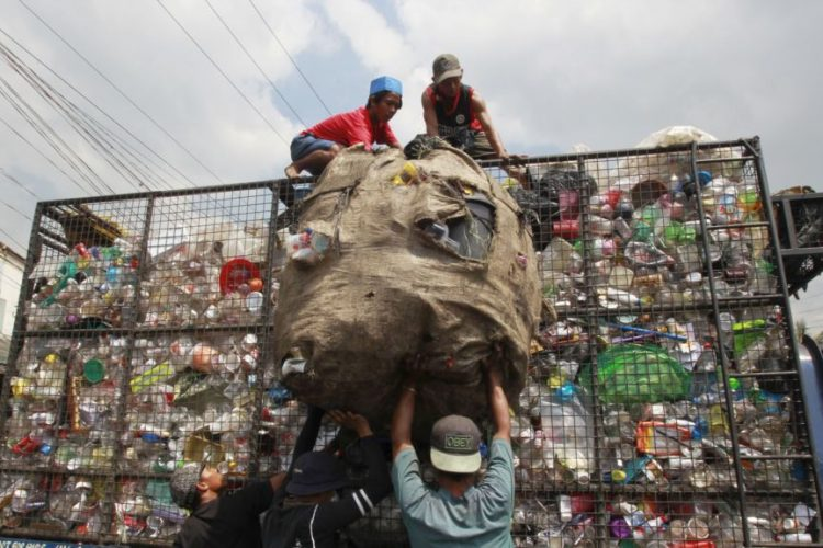 زبالۀ پلاستیک، دشمن حیوانات بحری